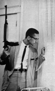 Malcolm X gun